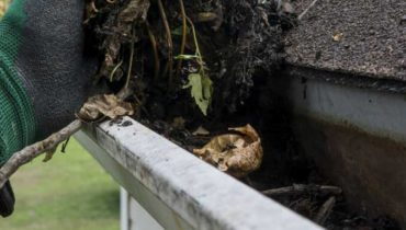 Gutter Cleaning Services Dublin - Featured image